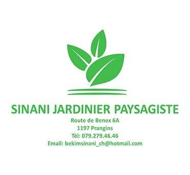 https://www.domicim.ch/wp-content/uploads/2019/09/logo_sinani_1.jpg